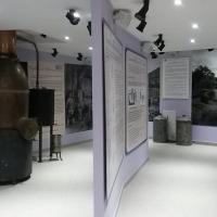 lavender museum digne