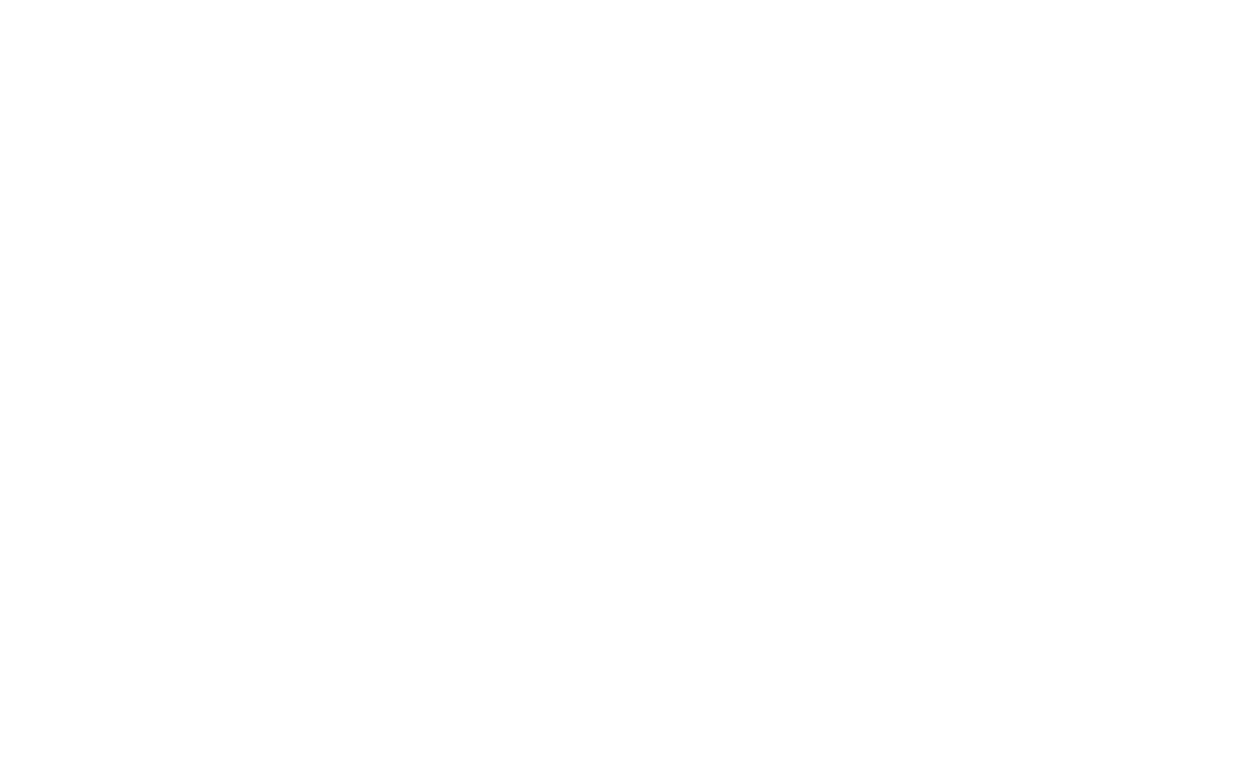 Logo nicolosi blanc