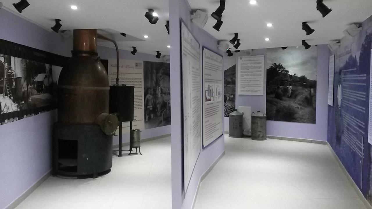 Musee lavande digne 1